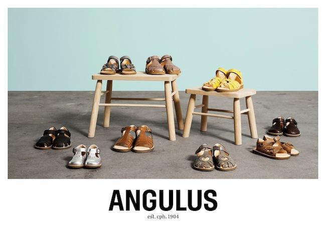 angulus.dk5